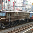 JR東日本 1997 お座敷列車「ゆとり」 EF58 61