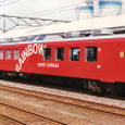 JR東日本 1987 スーパーエクスプレスレインボー④ オロ14_715