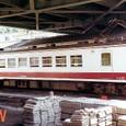JR東海 119系 *W2編成 クモハ123形40番台 クモハ123-42(後位側) 静岡運転所